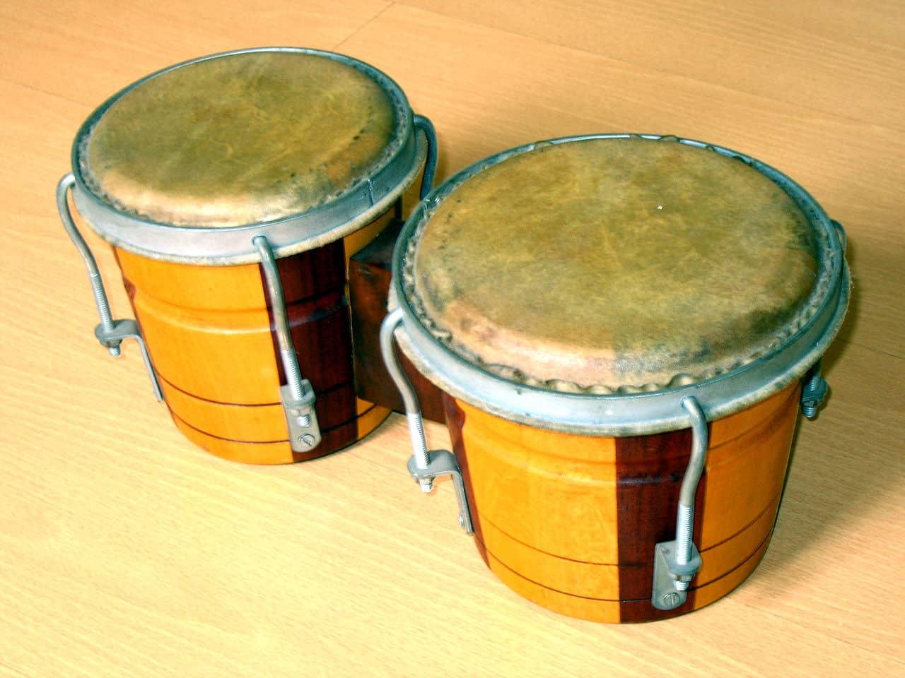 bongo's - bongo - bongos - bongó