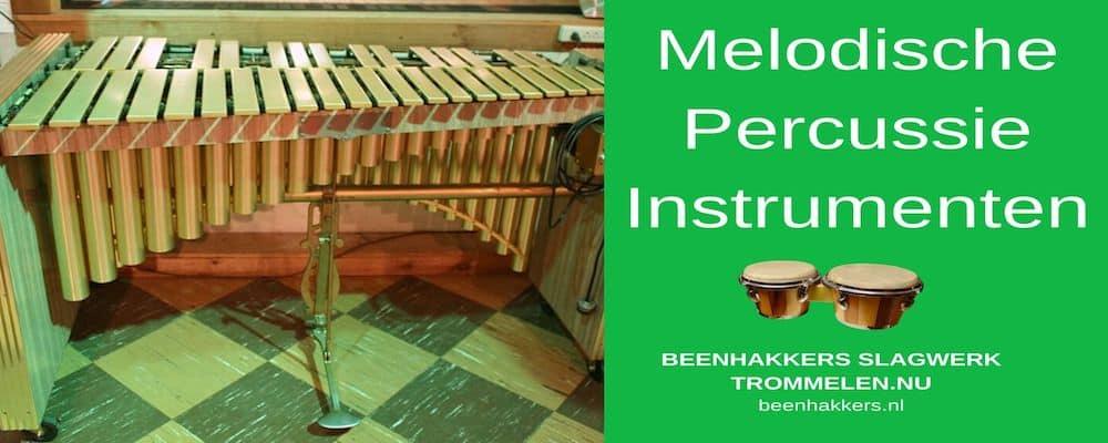 Melodische Percussie Instrumenten