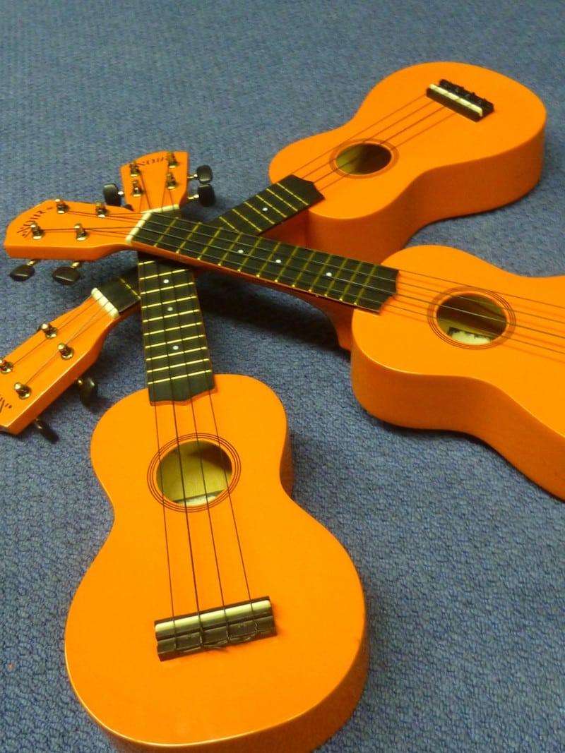ukulele ukelele ukuleles ukeleles