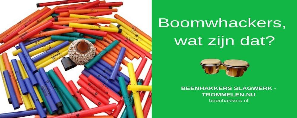 Wat zijn Boomwhackers? Wat is een boomwhacker