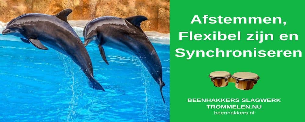 Afstemmen, flexibel ziojn en synchroniseren